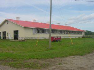 New Heifer Barn